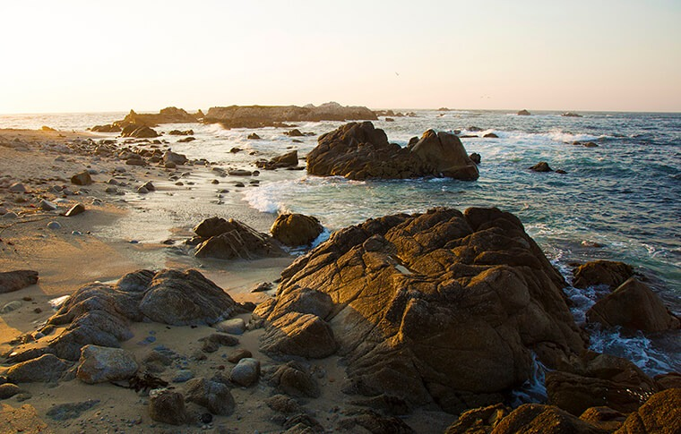 Pacific Grove Corporate Bike Tour