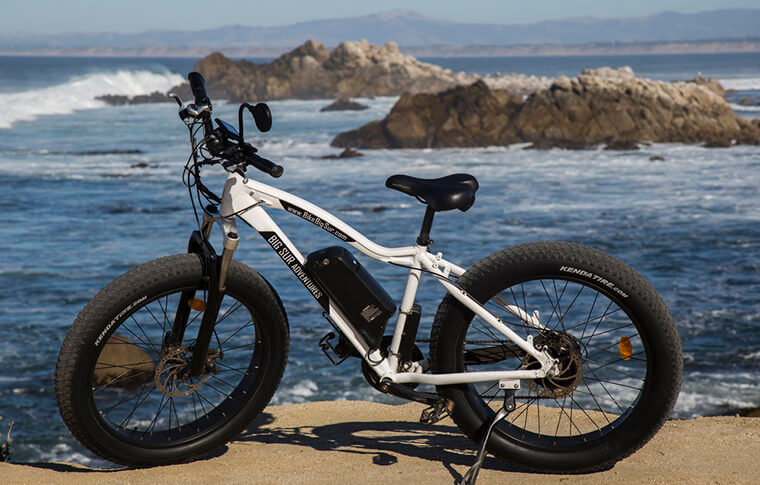 Rad Rover E-Bike